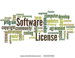 business software license